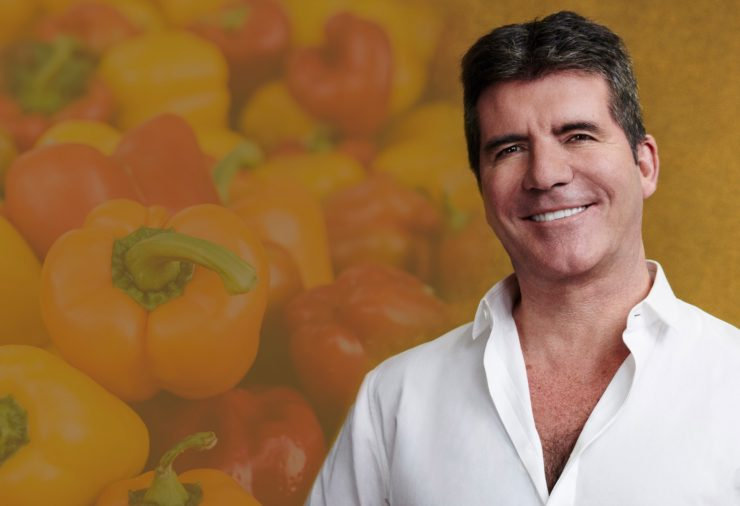 Easy activism ideas for busy vegans Easy activism ideas for busy vegans Simon Cowell 740x506
