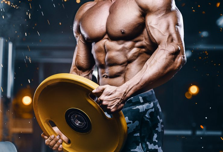 Coconut oil raises cholesterol levels Coconut oil raises cholesterol levels shutterstock 1277705647 740x506